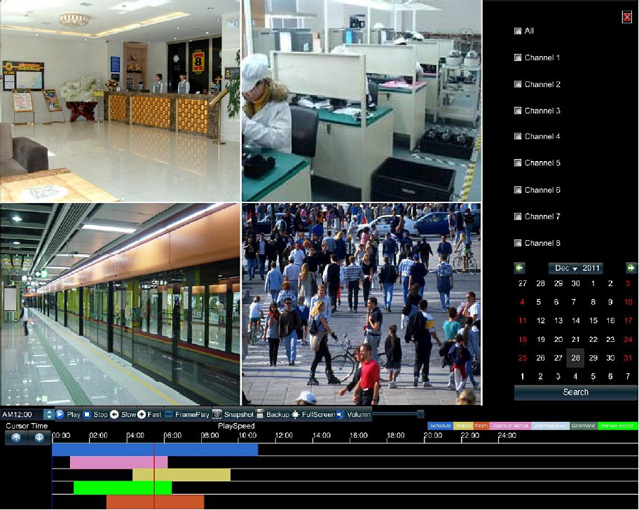 network video surveillance software